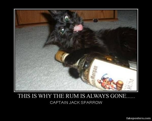 """""""This is why the rum is always gone."""" -- Captain Jack Sparrow"""