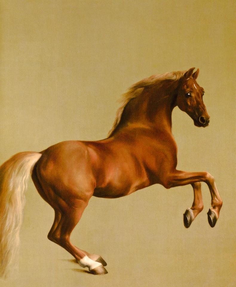 George Stubbs Whistlejacket Vintage Fine Art Print