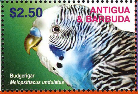 Antigua y Barbuda 2003 -  El Periquito Común, Periquito Australiano, Cotorra Australiana o Cata Australiana