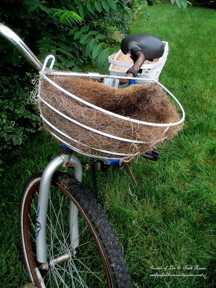Diy Project My Bicycle Planter Bike Planter Bicycle 400 x 300