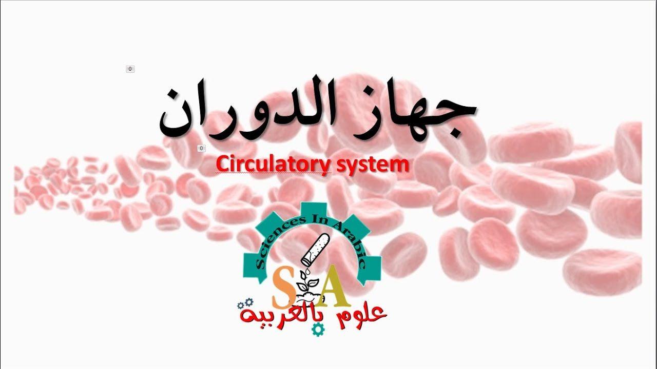 جهاز الدوران Circulatory System Circulatory System System Live Lokai Bracelet