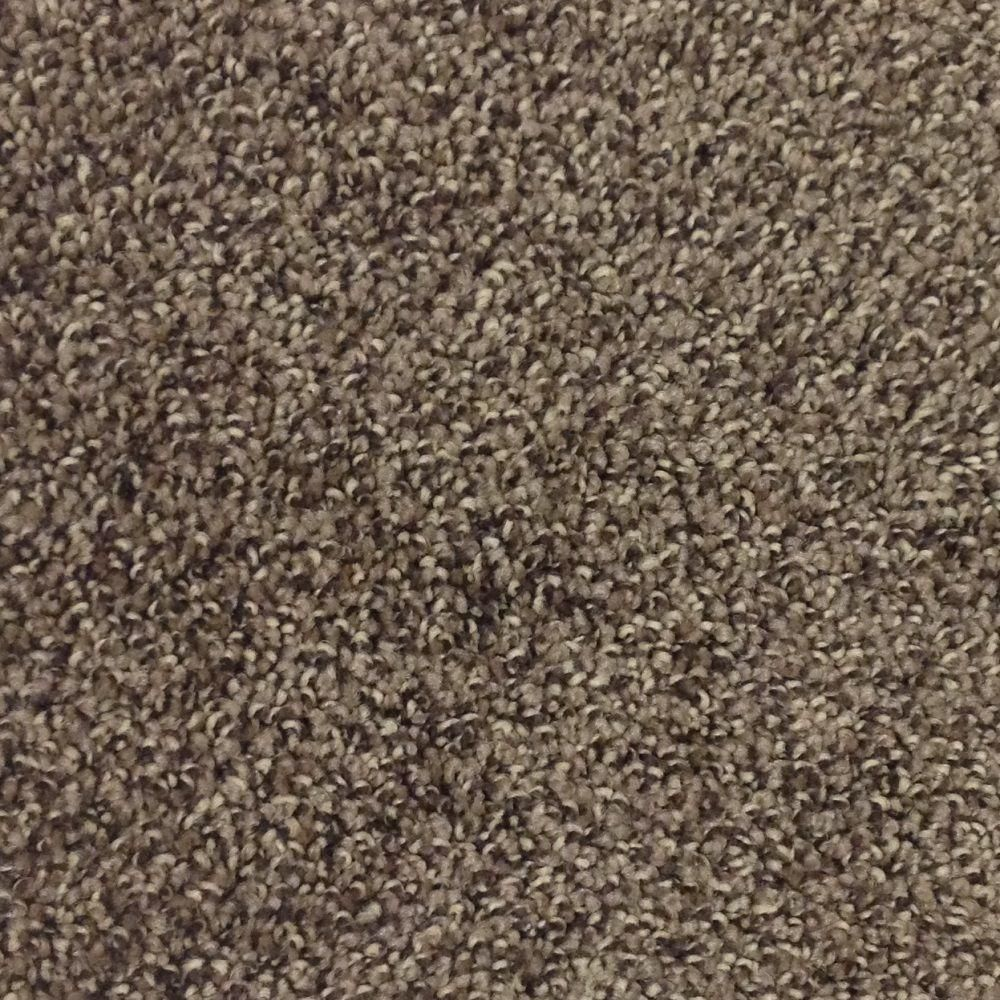 Trafficmaster Mystic Color Coffee Bean Twist 12 Ft Carpet Hd008