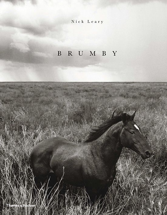 The hardcover coffee table book Brumby features images of the