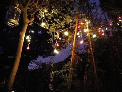 Out door events outdoor living pinterest doors lights and out door events mozeypictures Images