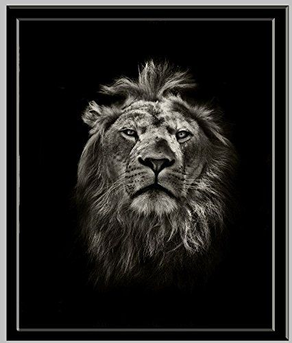 Amazon Com Black White Animal Lion Picture Painting Wall Art On Canvas Printed Poster Prints Lion Canvas Black And White Lion