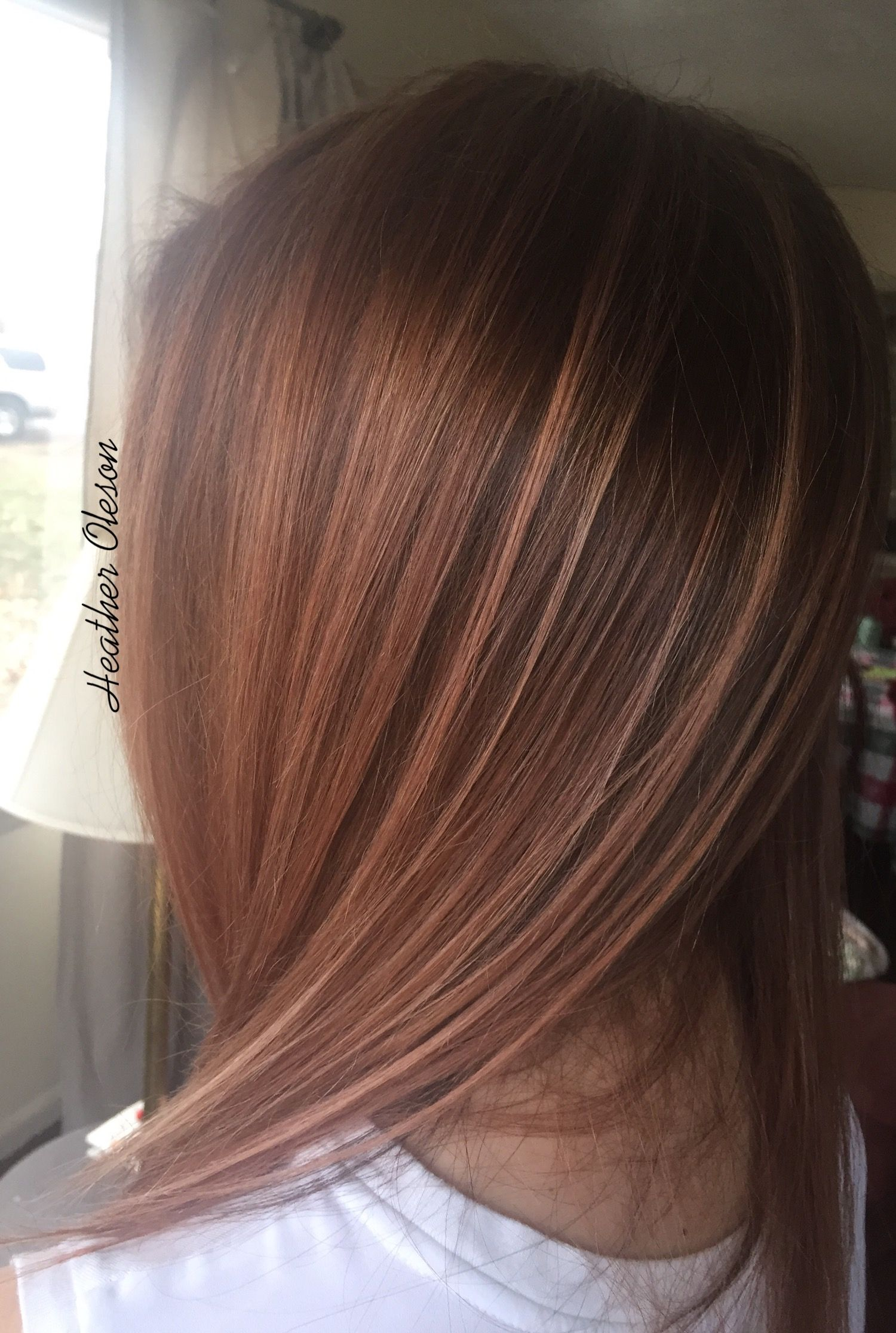 Kenra Color 7sm 8brm And 2 Red Booster On Pre Lightened Hair To