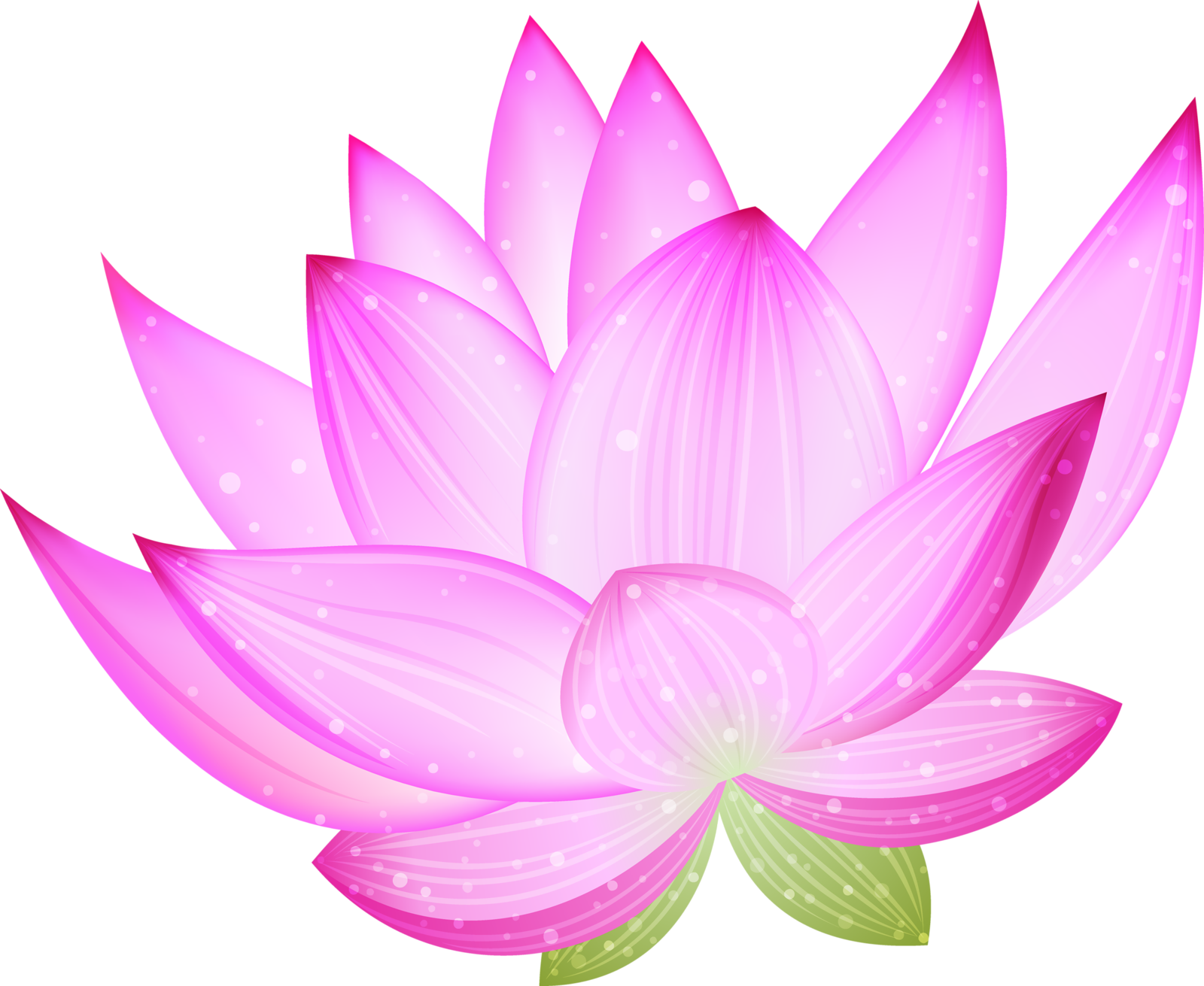 Pink lily flower transparent image the cliparts -