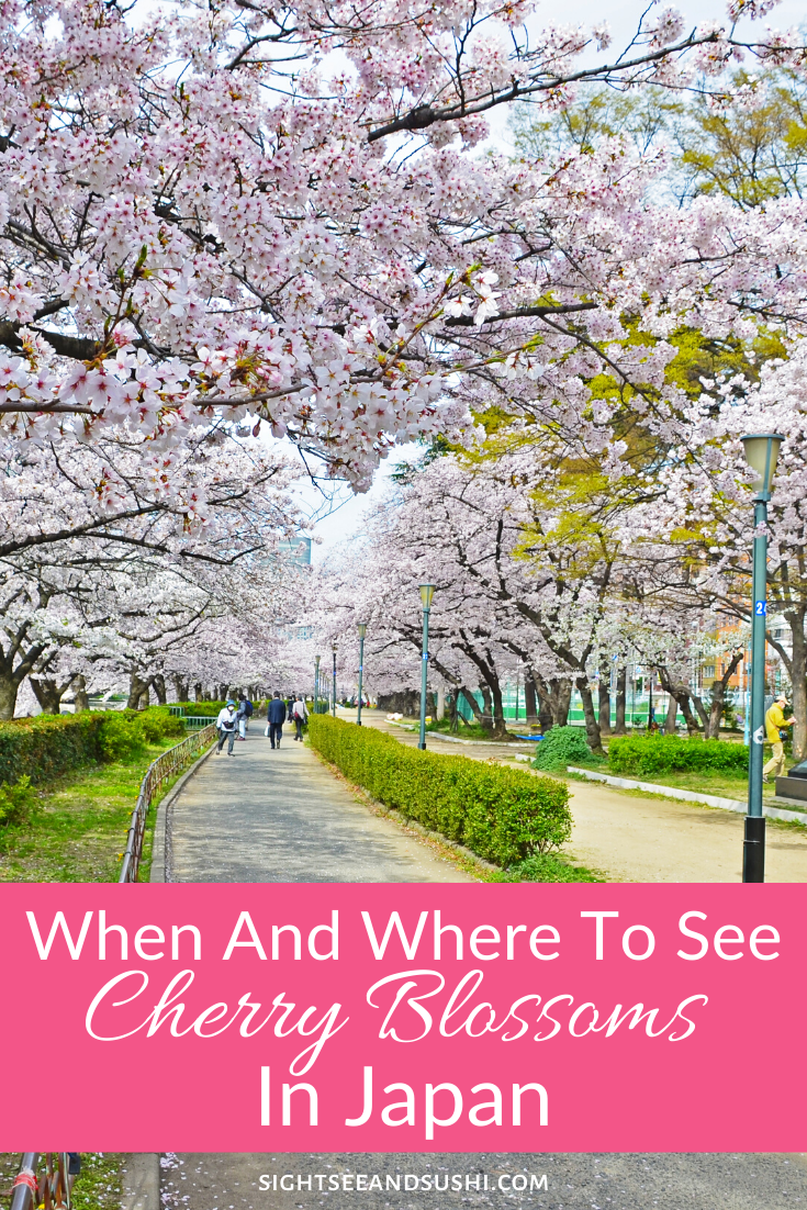 The Very Best Places To See Cherry Blossoms In Japan Japan Cherry Blossom Japan Winter In Japan