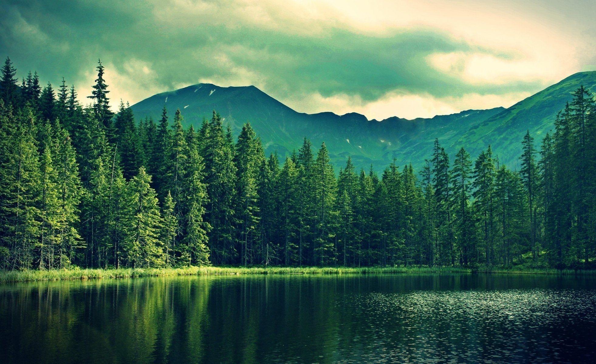 Nature Forest Mountain Lake Rain Fishing Beautiful Hd Wallpaper Landscape Wallpaper Lake Landscape Mountain Landscape