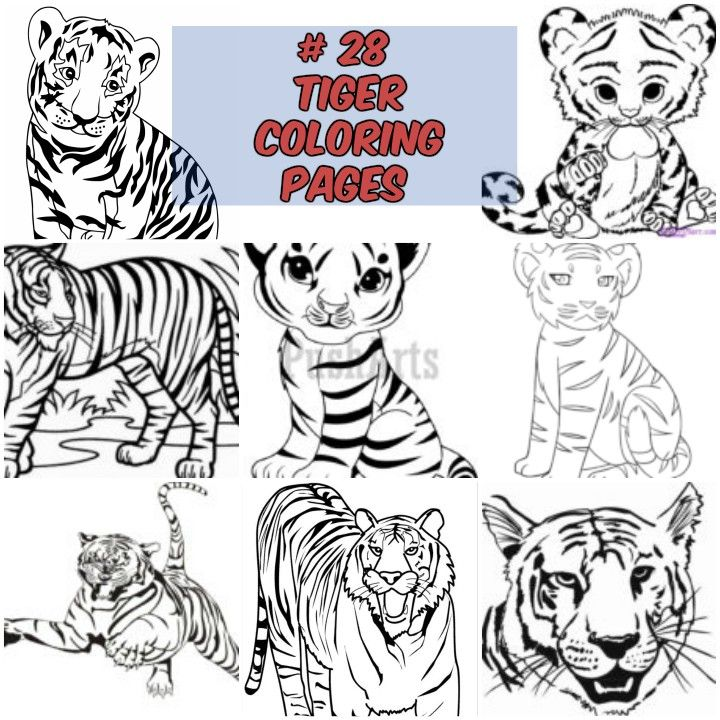 28 Tiger Coloring Pages Wild And Majestic Animals Cartoon Tiger