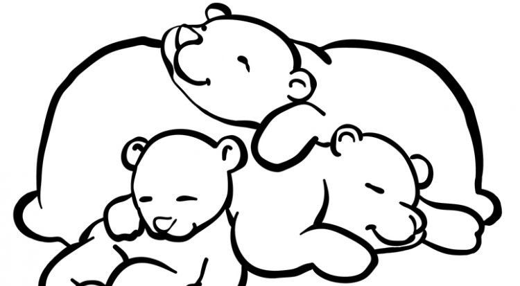 Sleeping Bear Coloring Pages To Print Mis Pluszowy