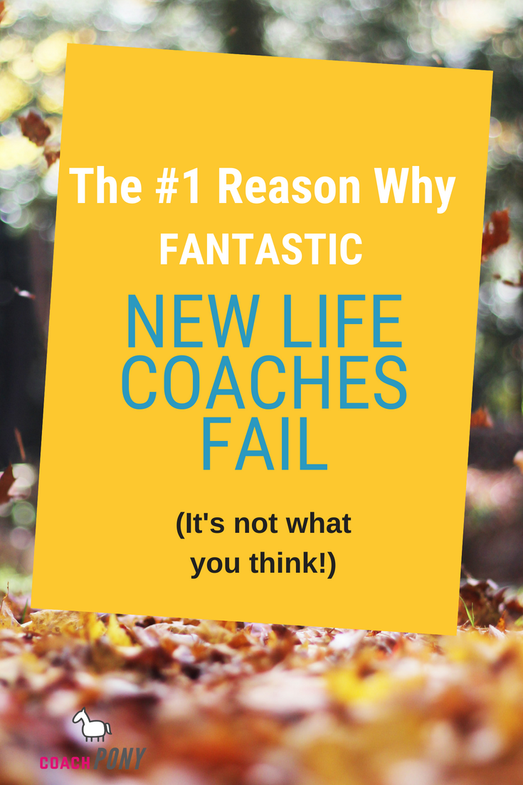 How Much Do Life Coaches Really Make Here S Why Most Coaches