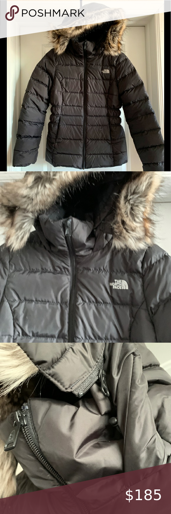 Nwt North Face Puffy W Detach Fur On Hood S North Face Fleece Jacket North Face Puffer Jacket Green Hooded Jacket [ 1740 x 580 Pixel ]
