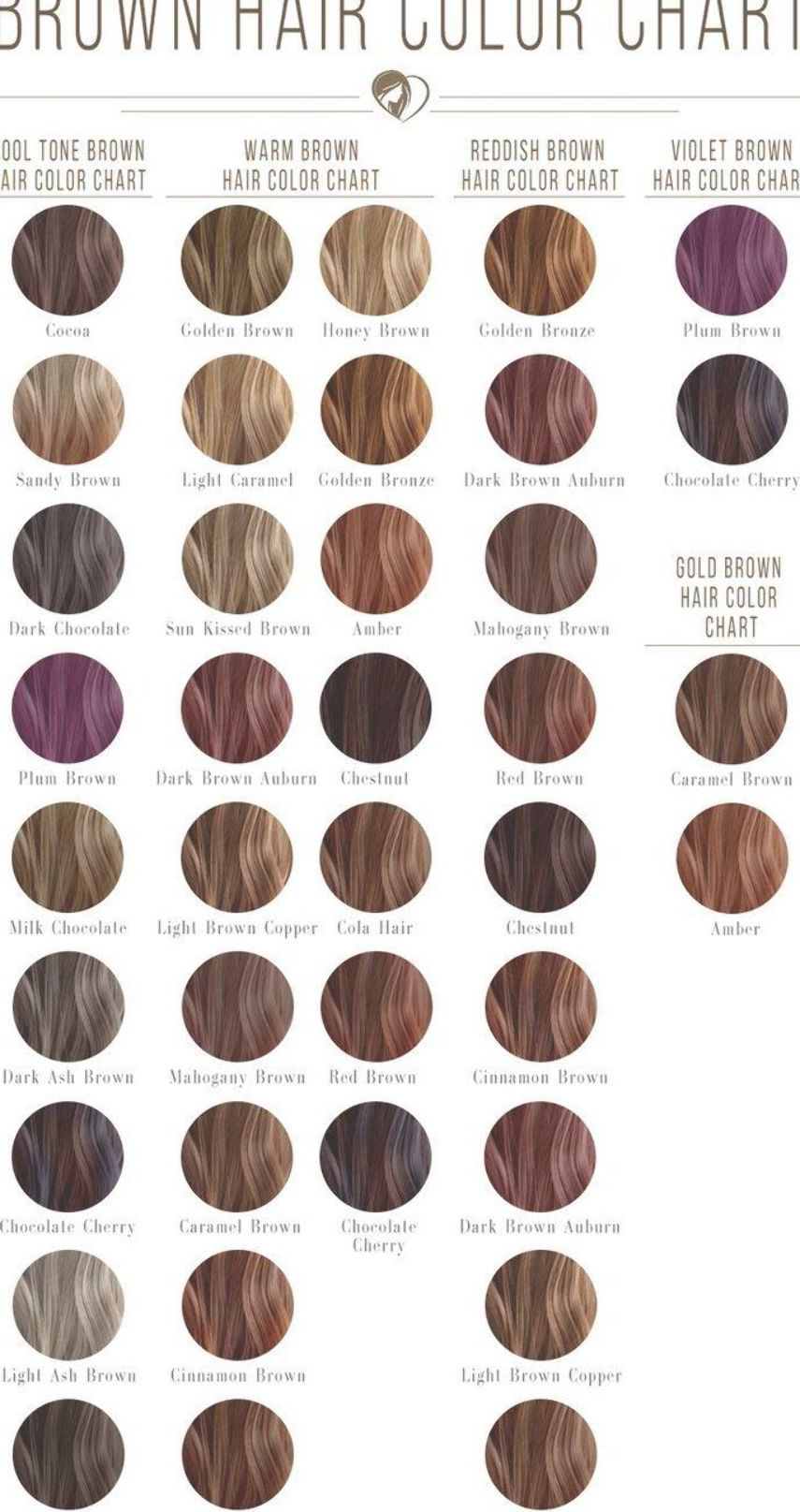 Pin By Maci Herman On Hair Color Hair Color Chart Brown Hair Shades Brown Hair Color Chart
