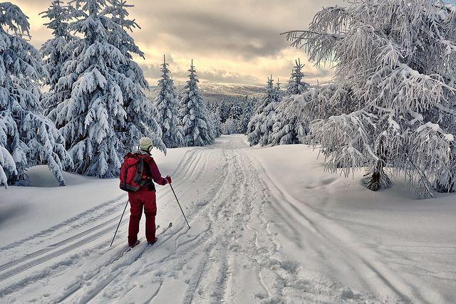 Faire du ski de fond - ✓ : février 2015