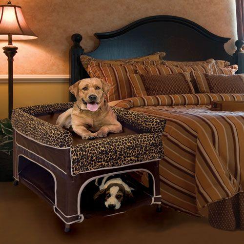 Dog Bed For 2 Dogs Goldenacresdogs