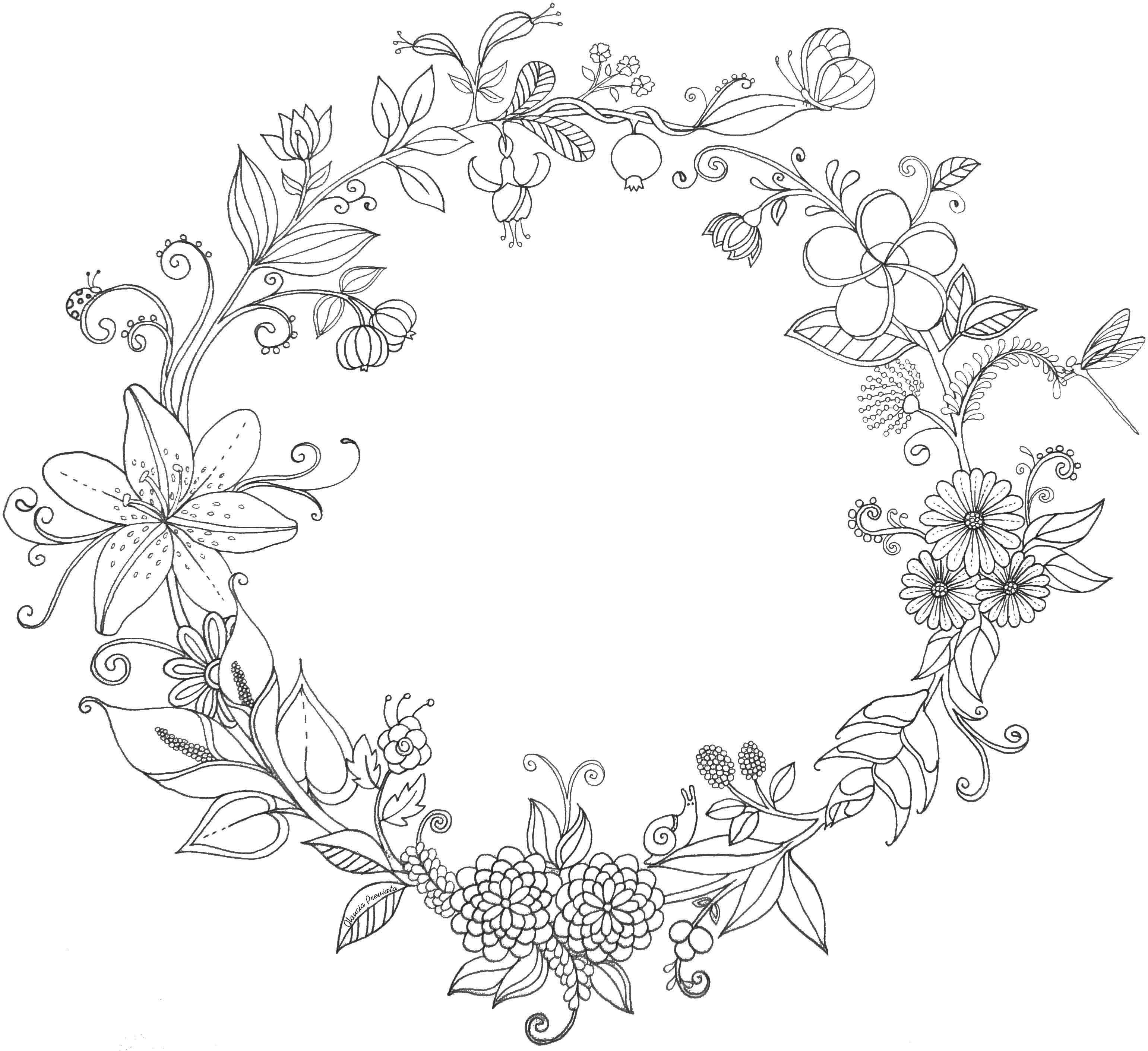 Ilustração Flores Do Brasil Illustration Flowers Brazil
