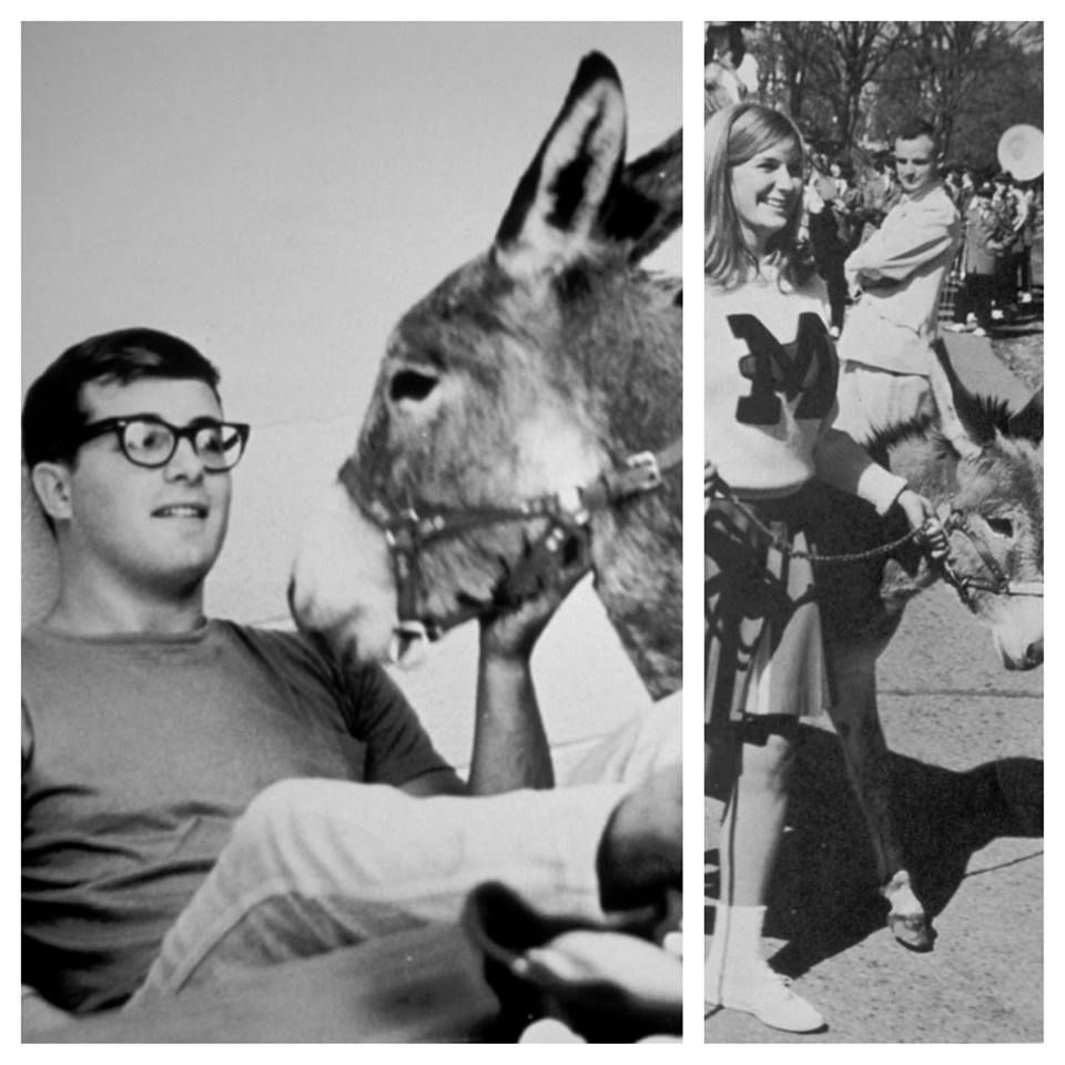 -  - Who would have thought a donkey would bring us together! Sue and I met in college - and animals were a part of our relationship from day 1.  ~Jungle Jack Hanna~