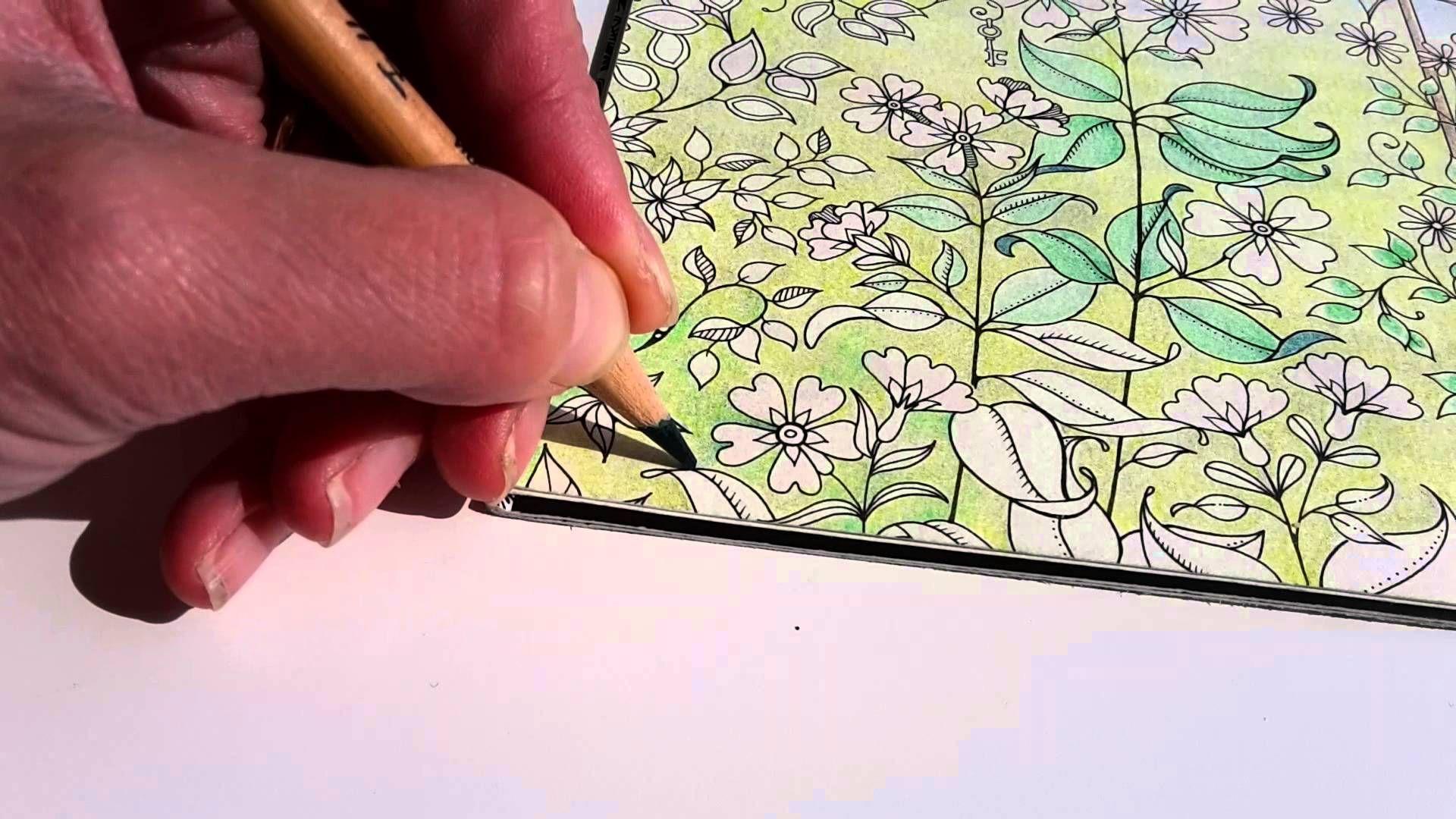 Colouring Secret Garden The Morning