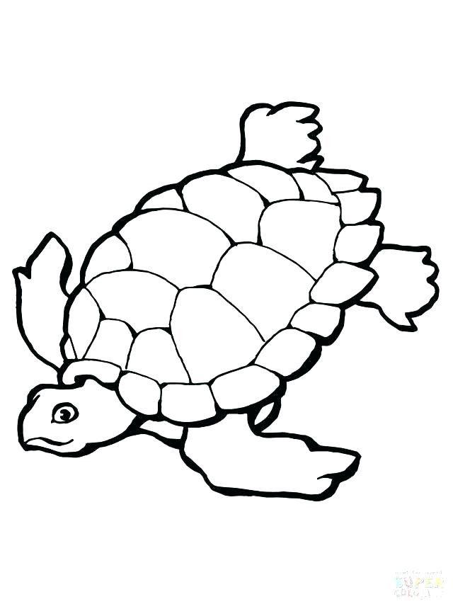Parking Turtle Coloring Page - youngandtae.com | Tartaruga ...
