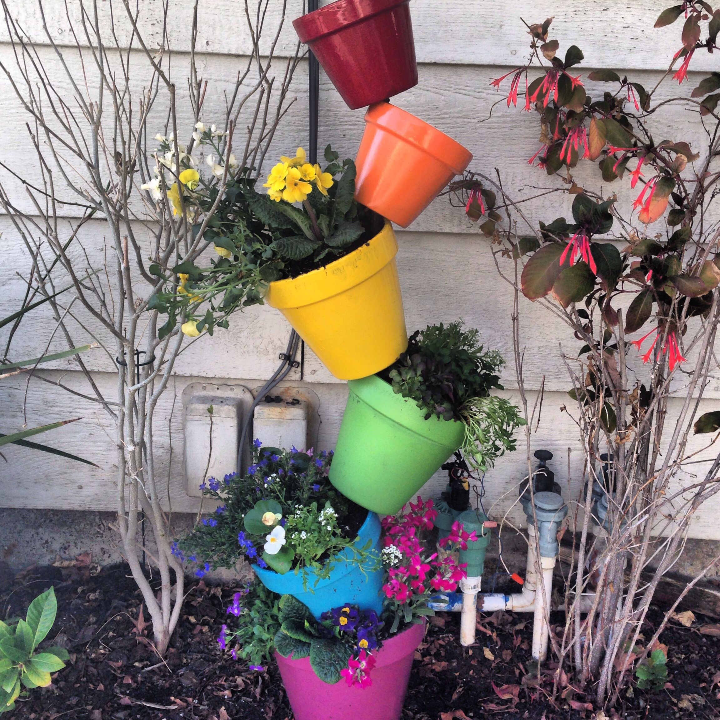 My rainbow planter! The flowers in each pot match their color!