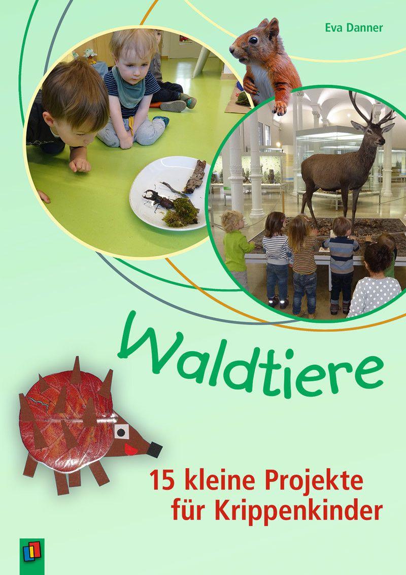 Waldtiere 15 Kleine Projekte Fur Krippenkinder Waldtiere Krippe Naturkindergarten