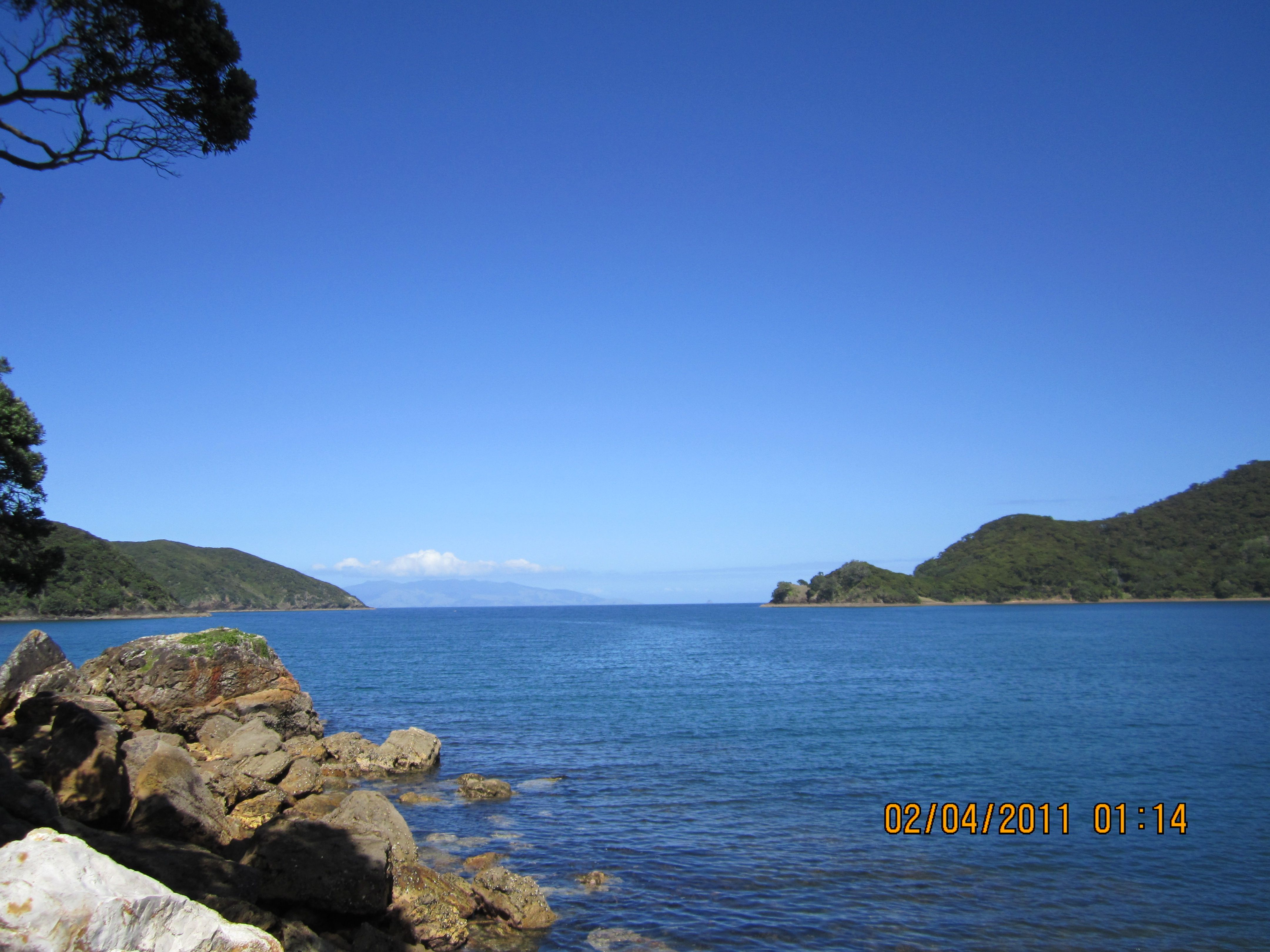 Great Barrier Island New Zealand  City new picture : Great Barrier Island, New Zealand | Here, there everywhere | Pinterest