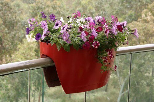 Greenbo XL Planter Plastic Red for Balconies and Railings Available on