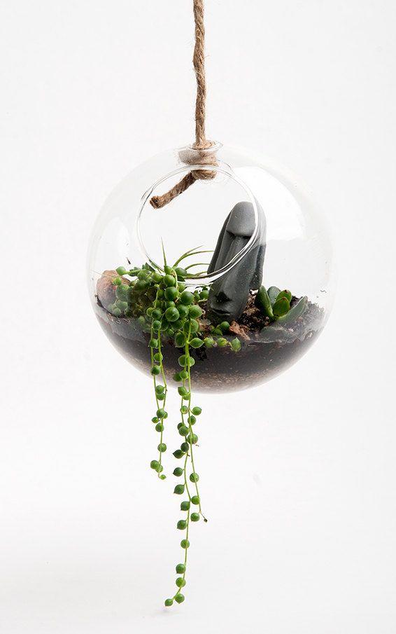 Hanging Round Terrarium Kit Desktop Micro Environment Everything