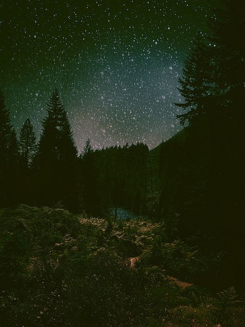 Country Night Sky Must See Night Skies Sky Sky Full Of Stars