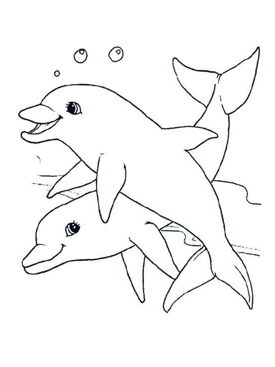 dolphin line drawing digi stamp | Bebe | Pinterest | Delfines ...