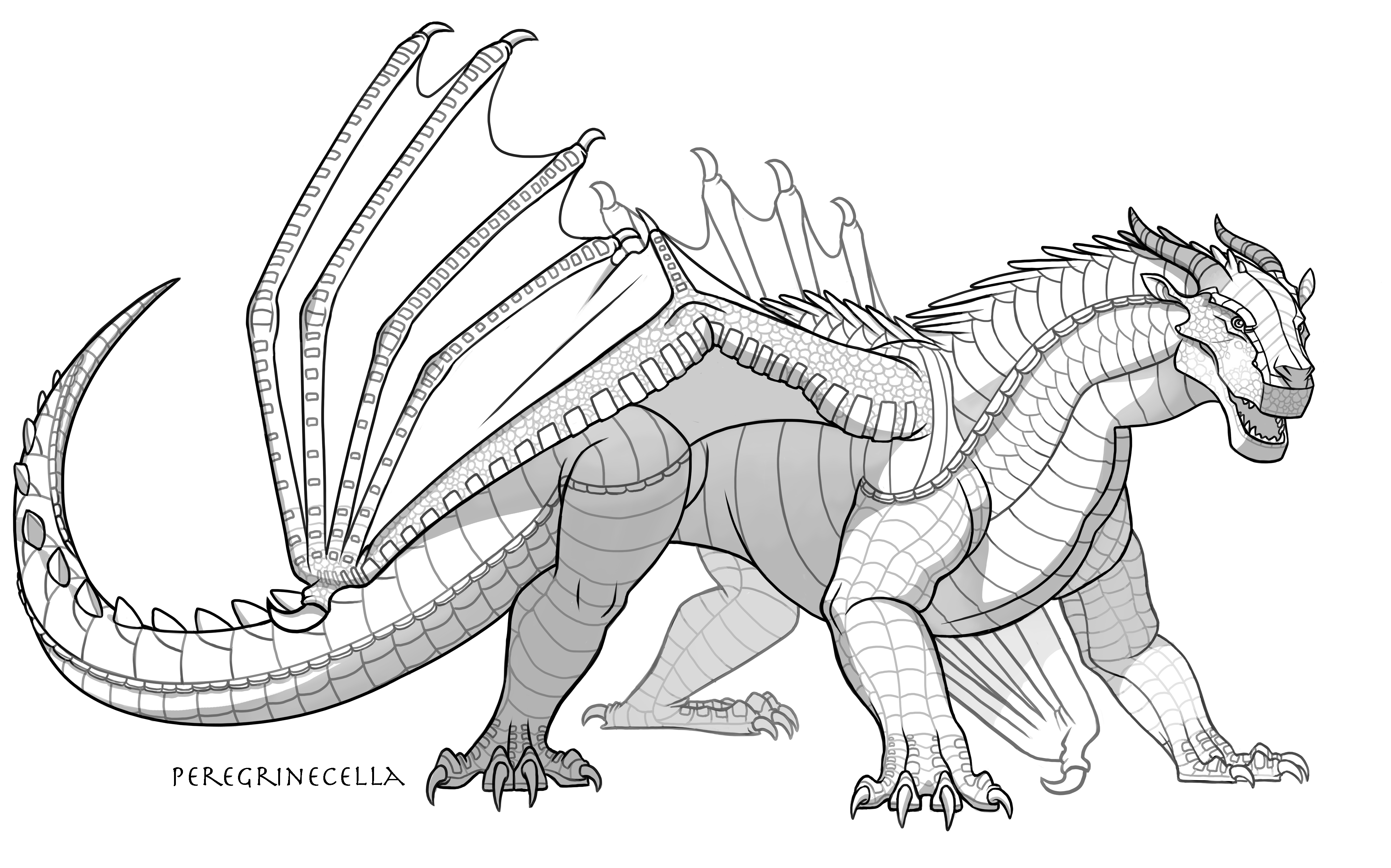 Mudwing Base By Peregrinecella On Deviantart In 2020 Wings Of Fire Dragons Wings Of Fire Dragon Sketch