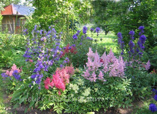 schattenbeet sch n in kombi mit hortensien garten blumen pflanzen pinterest hortensien. Black Bedroom Furniture Sets. Home Design Ideas