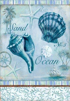 Medium sand ocean shell