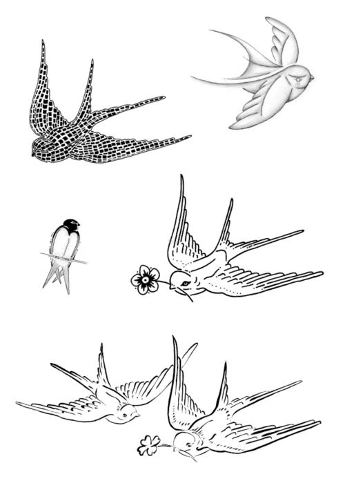 By Carlijn Claire Potma Title: Untitled   swallow flash Client: self initiated Type: drawing / illlustration / tattoo design Year: 2014 #birdtattoo #tattoodesign #traditionaltattoo #swallowtattoo