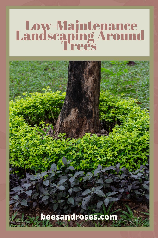 Pin On Perennial Garden Ideas