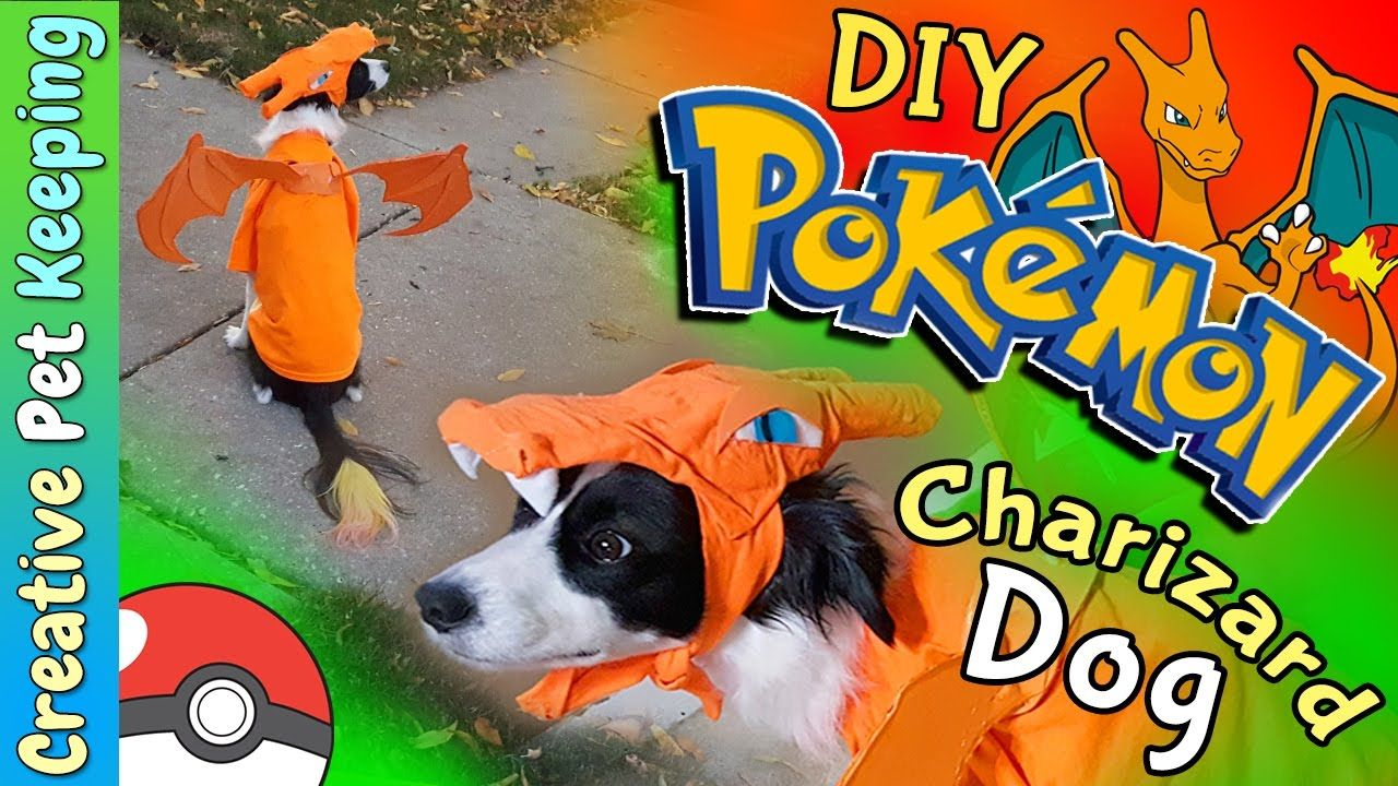 Pin By Tara Fitzpatrick On Anime Outfits Pokemon Costumes Dog