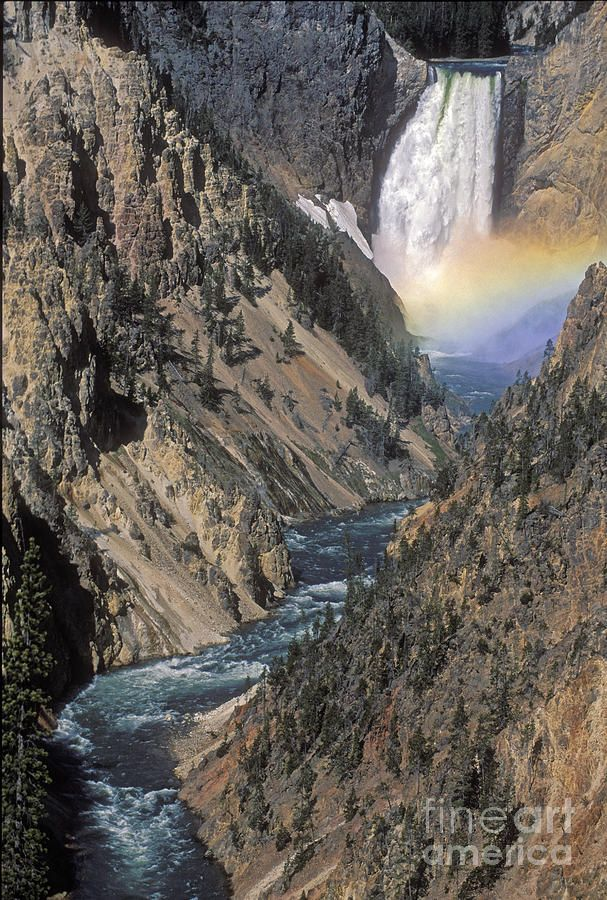 Rainbow On The Lower Falls National parks, Yellowstone