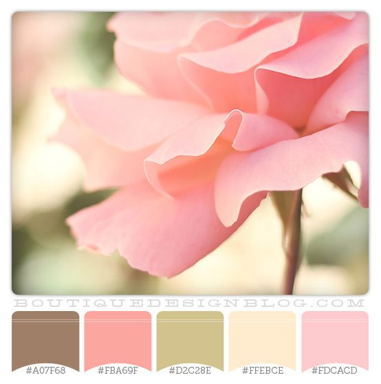Rose Garden Color Scheme With Pinks And Greens