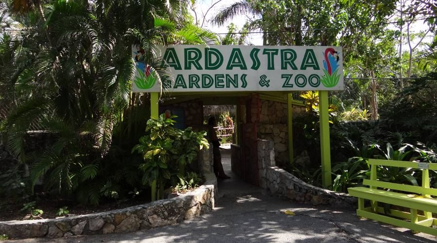 Ardastra Gardens Zoo And Conservation Centre Cost