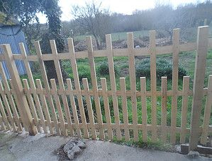 ganivelle, châtaignier, bois, clôture, jardin, paysage, terrasse ...