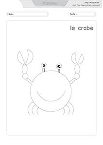 Graphisme Dessiner Le Crabe Garde Corps Escalier Art