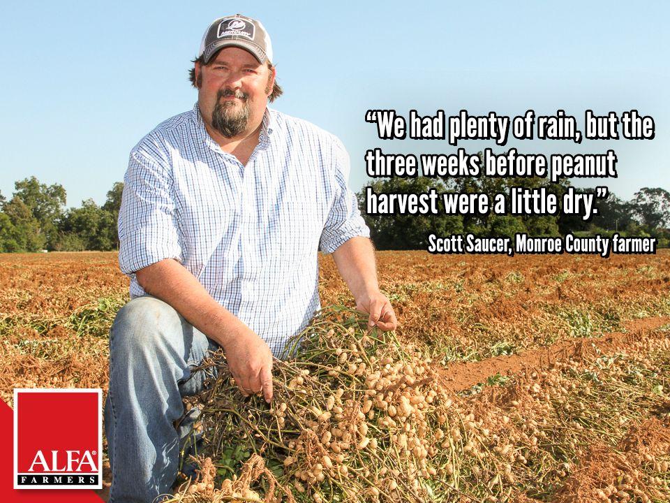 Monroe County Farmer Scott Saucer Farmer Monroe County Harvest