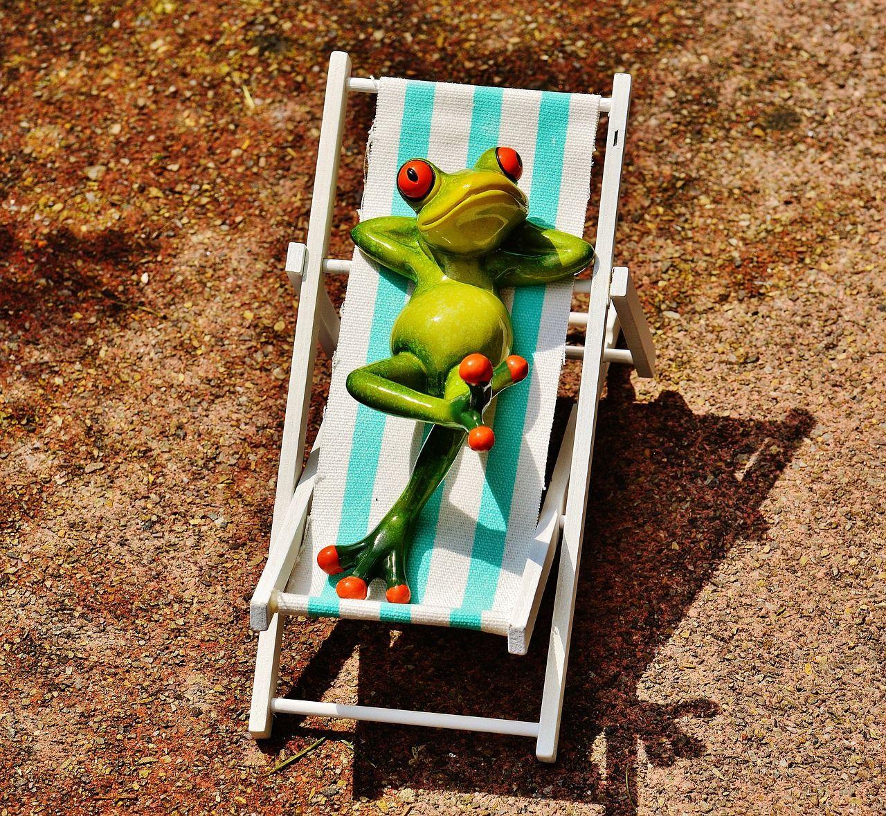 Vacation, Deck Chair, Beach, Frog, Summer, Sun vacation