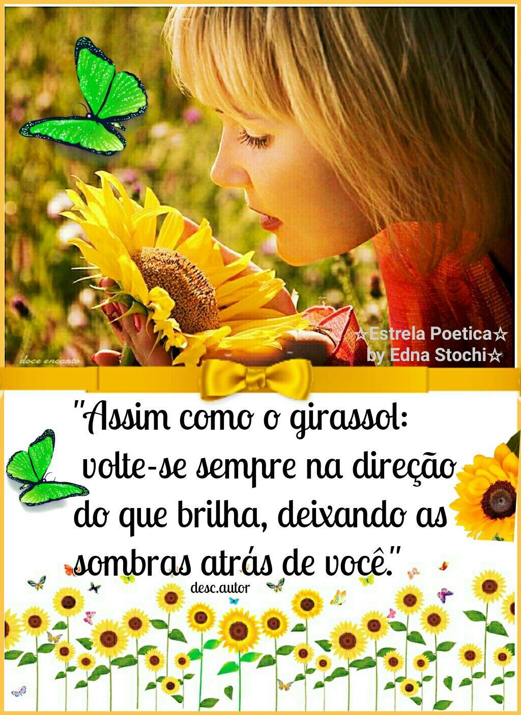 Como Girassol Bomdia Boatarde Boanoite Amigos Deus Frases