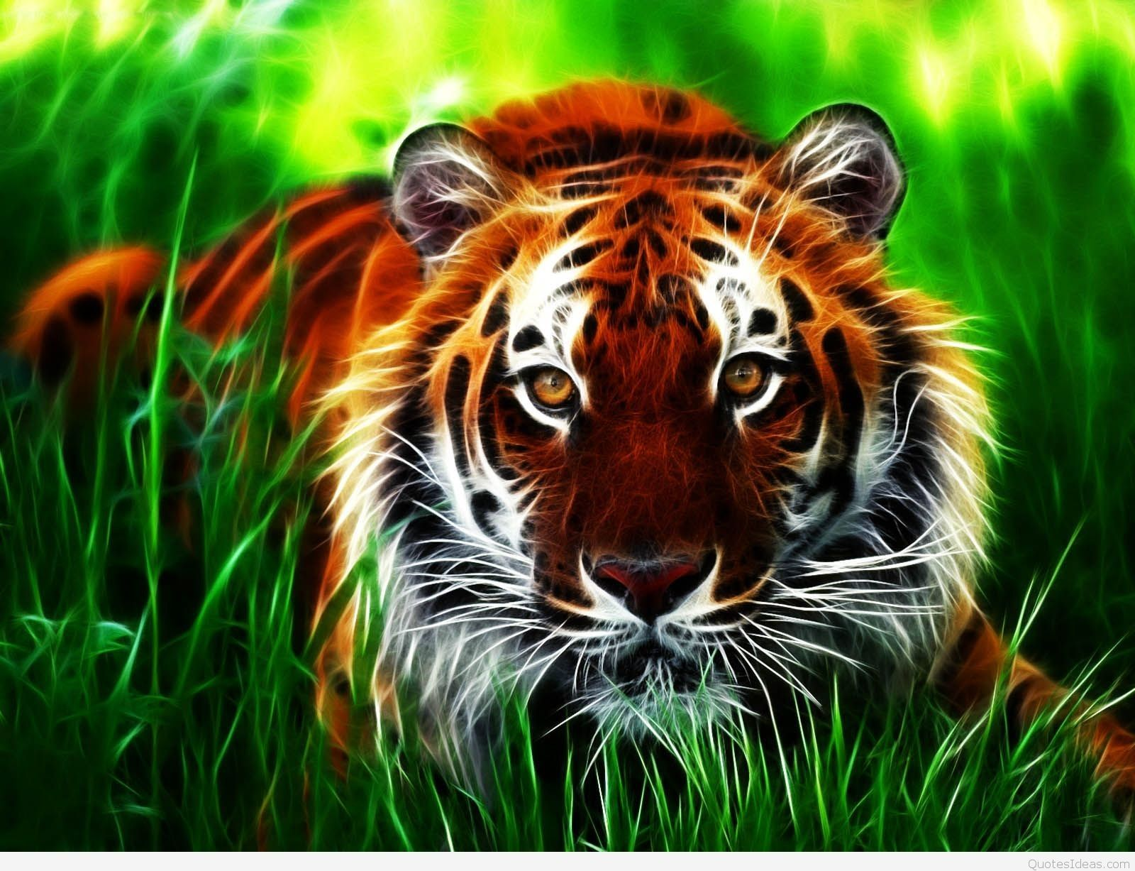 Fresh 3d Animal Wallpapers Free Download In 2020 Animal
