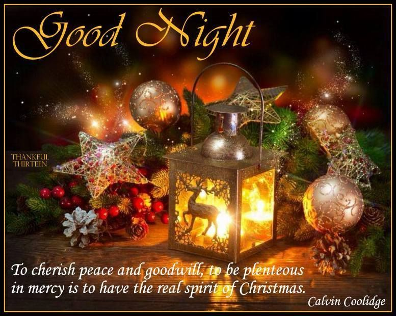 goodnight christmas quote flowers christmas lanterns. Black Bedroom Furniture Sets. Home Design Ideas