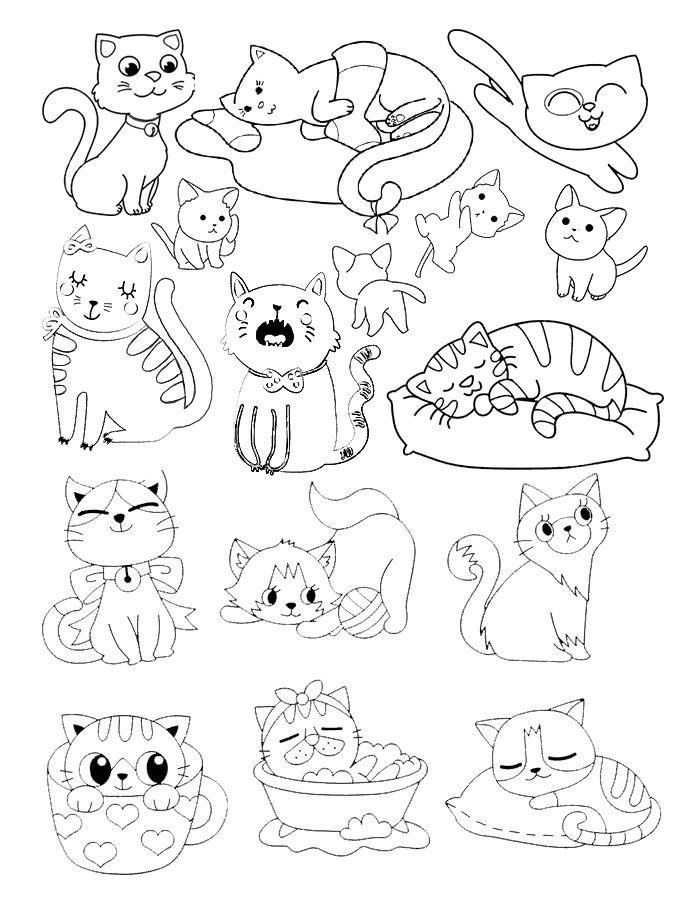 #котята #раскраска #многомилыхкотят #котики #кошка # ...