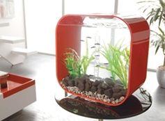 Design Aquariums. Lounge Avenue