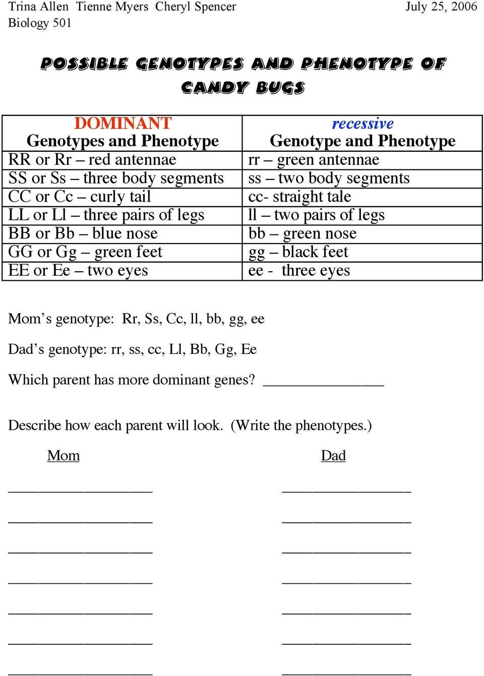Genotypes and Phenotypes Worksheet Answers Lesson Plan